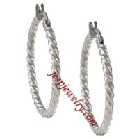 Stainless Steel 2mm Twisted Hoop Earrings