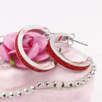 The inlaid red diamond stainless steel earrings