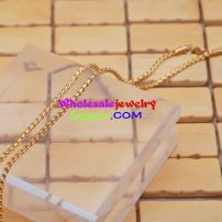 stainless gold necklace with two parallel chains