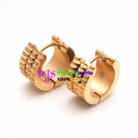 Keeping Passion Style of Stainless Steel Earring suitable for You and Me